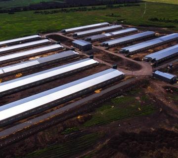 Комплекс по производству и переработке мяса птицы ООО